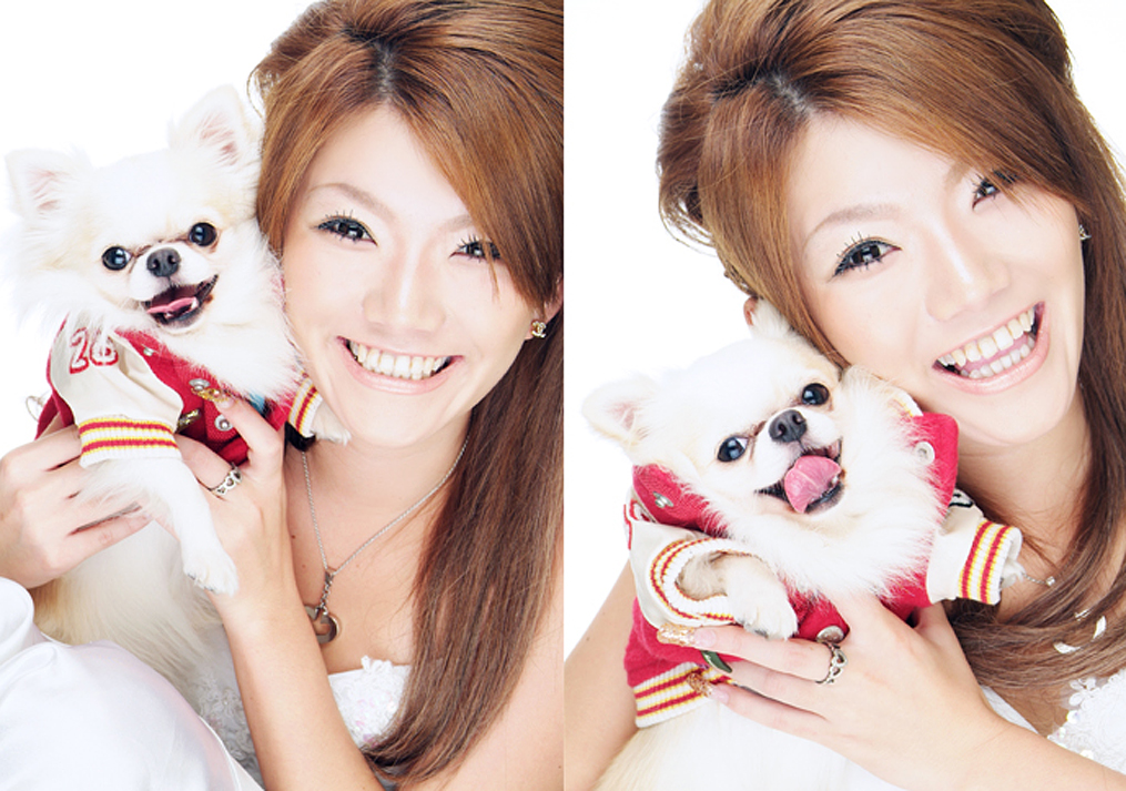 笑っている白い犬の写真